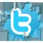 следуйте за мной в twitter
