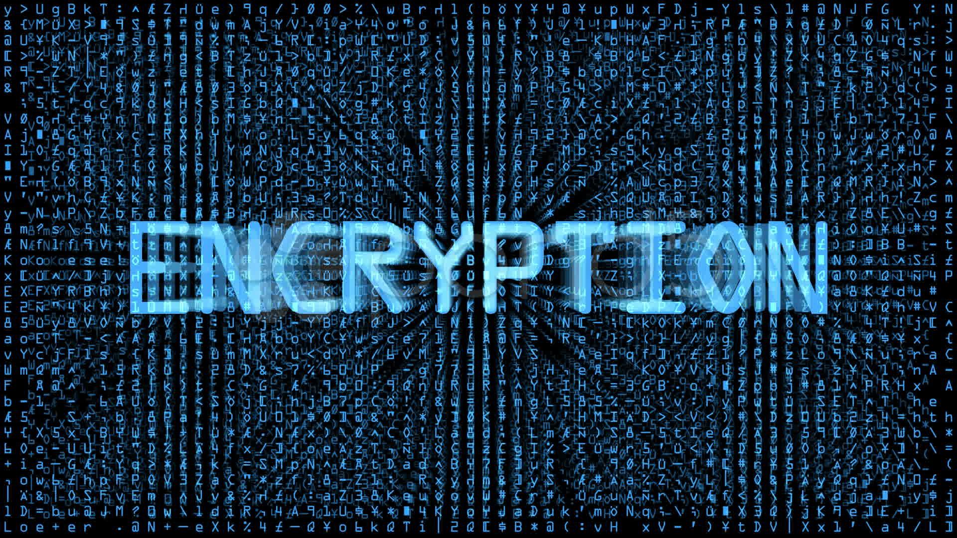 Encrypted darknet gidra как включить куки в тор браузер попасть на гидру