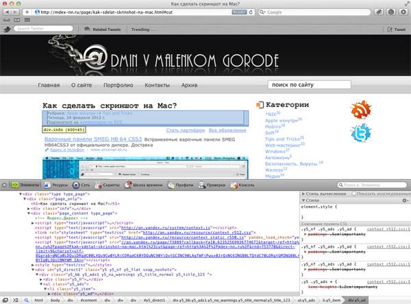 Safari с панелью веб-инспектора