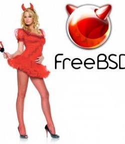 Проброс портов в ядерном IPFW NAT на FreeBSD 8 2
